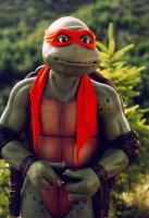Turtles 3...